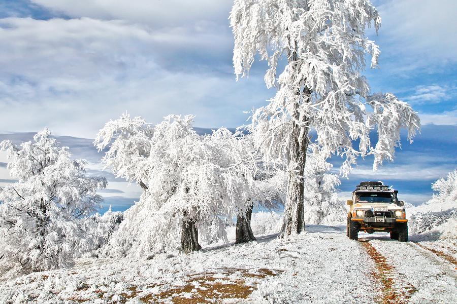 Iarna - Povesti in alb