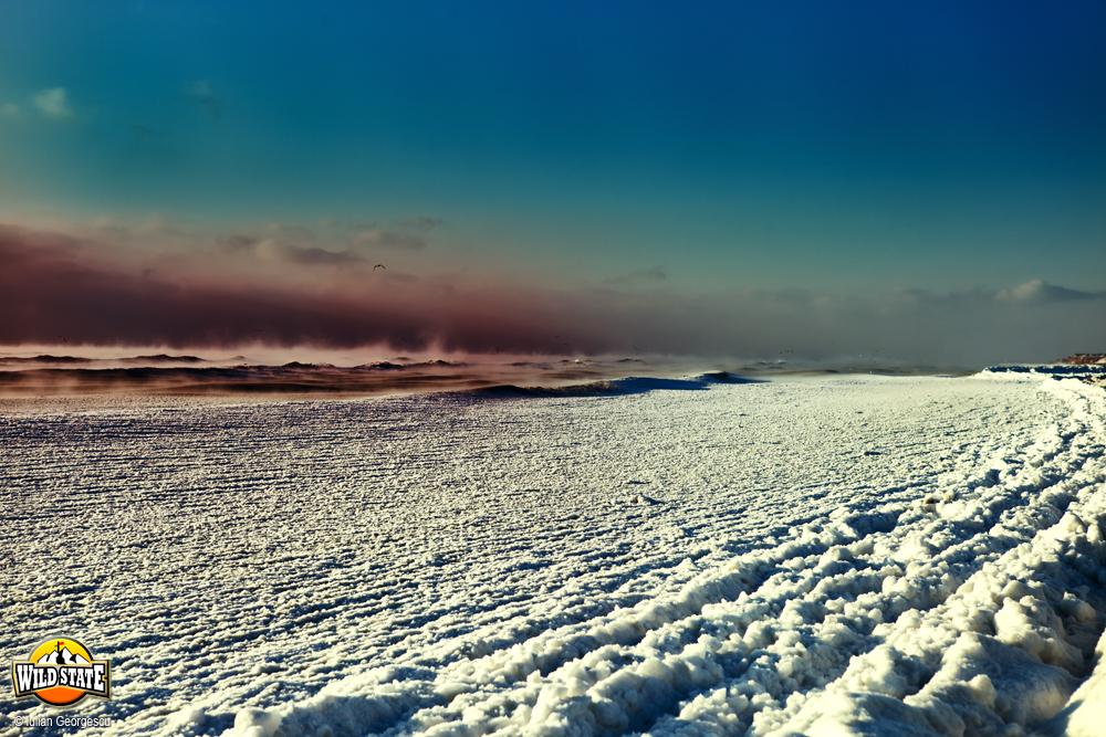 iarna_extrema_la_corbu_10.jpg